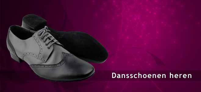 Dancing shoes men  for standard dance, salsa, tango, ballroom, latin, danssneakers on Spins.be